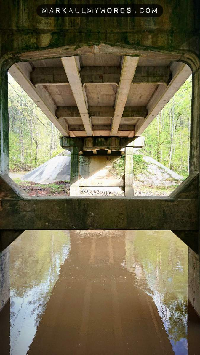 Underside of Cole Mill Road, with concrete trestles