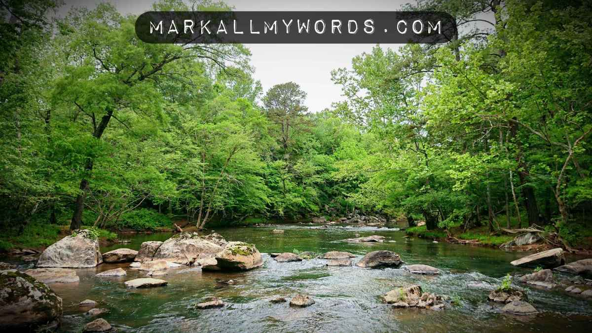 Wide shot of Eno River and stones
