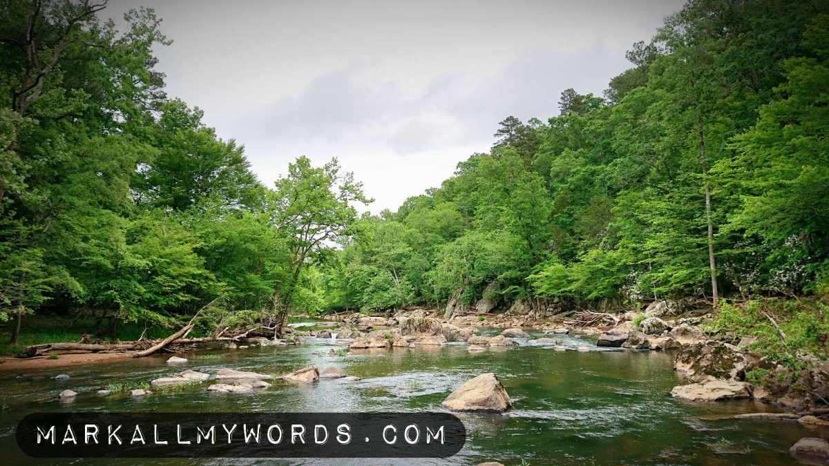 Wide shot of Eno River with boulders and green forest