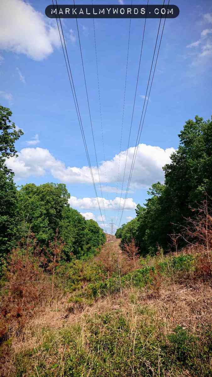 Power line in clearcut with blue sky and clouds