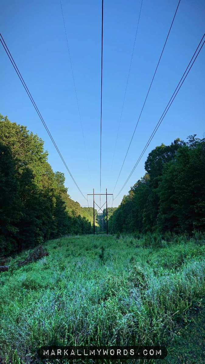 Power lines extending into distance under bright blue sky