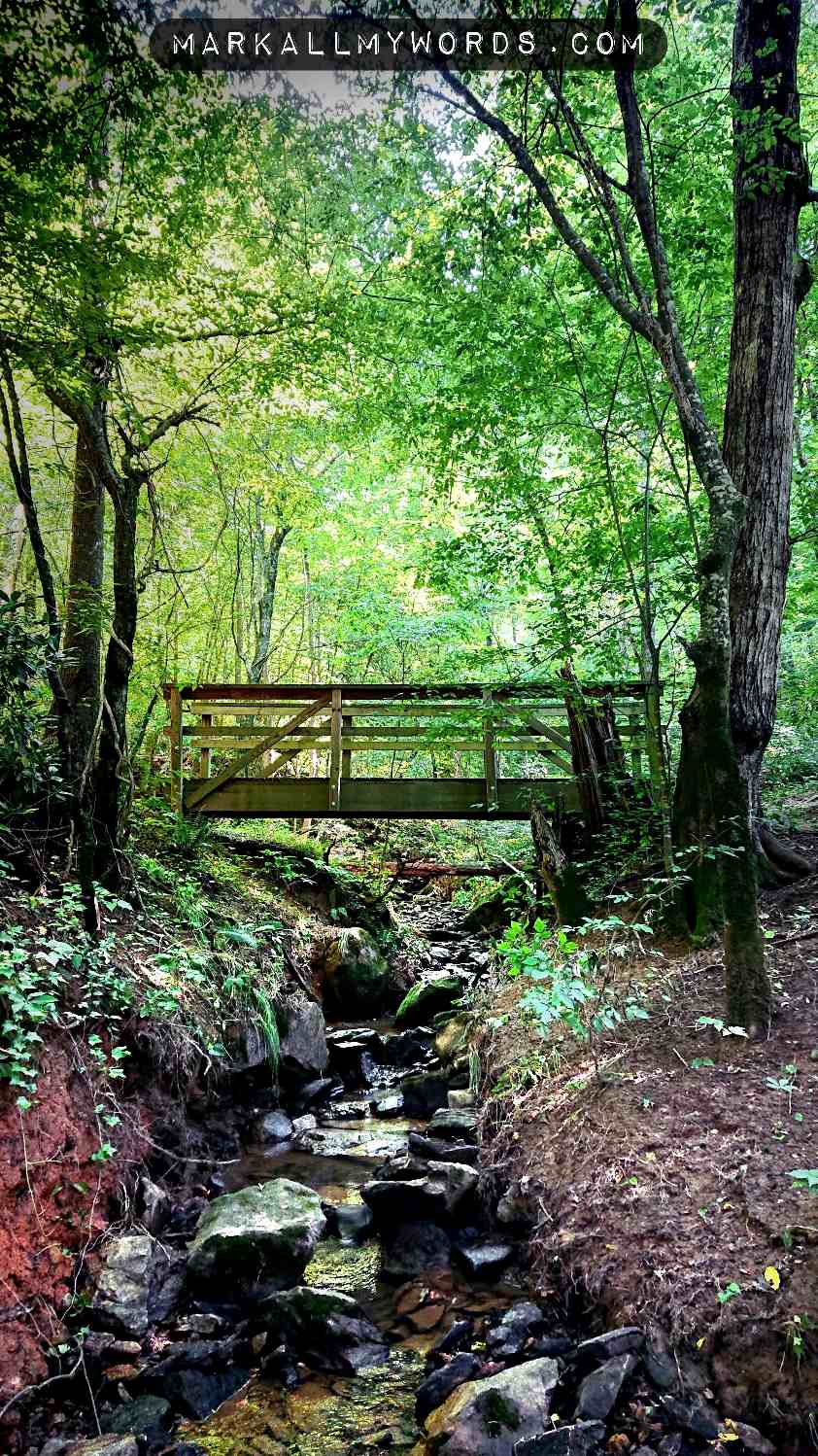 Wooden footbridge over stony creek in forest