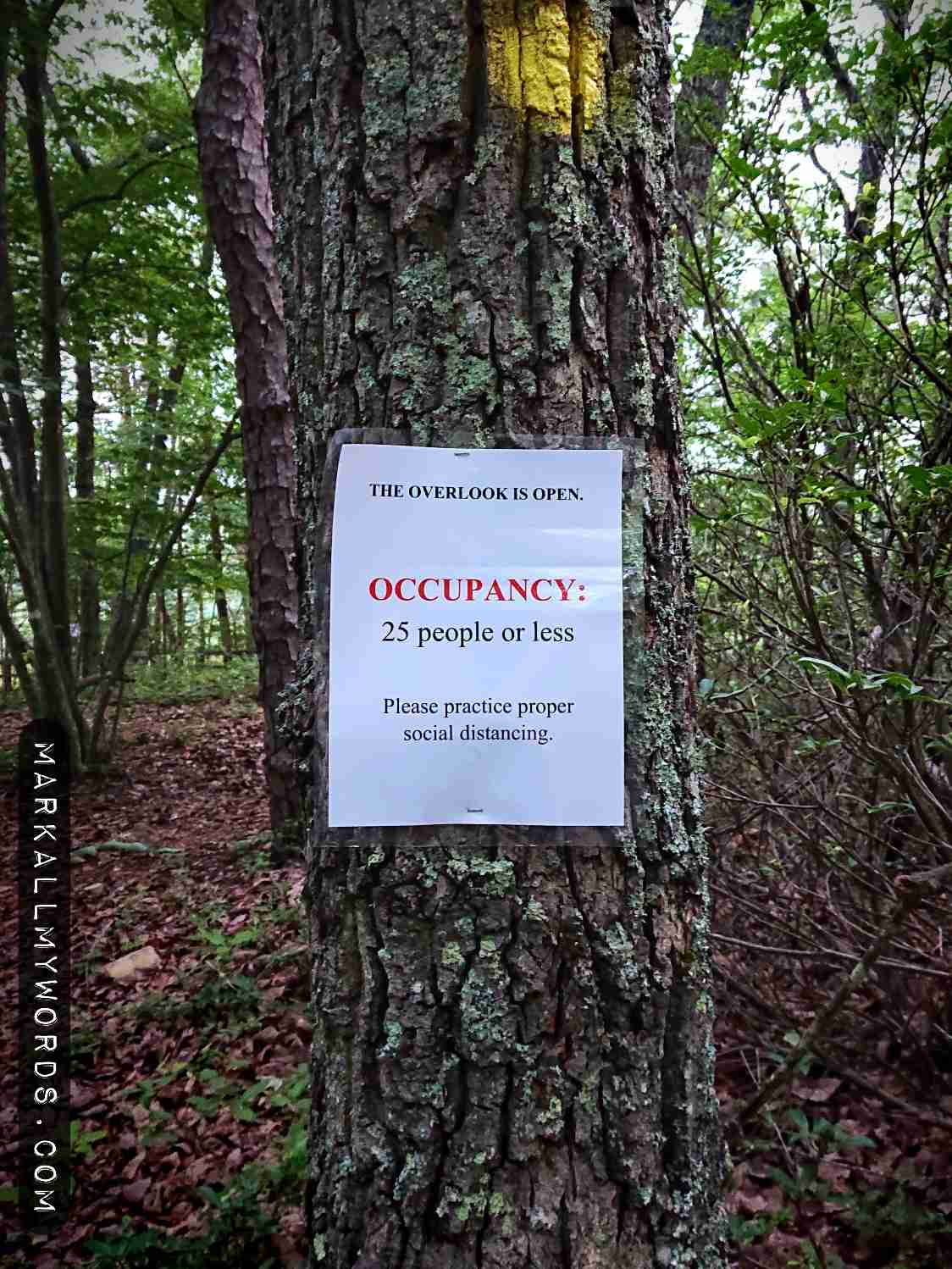 Occupancy sign on tree near Overlook