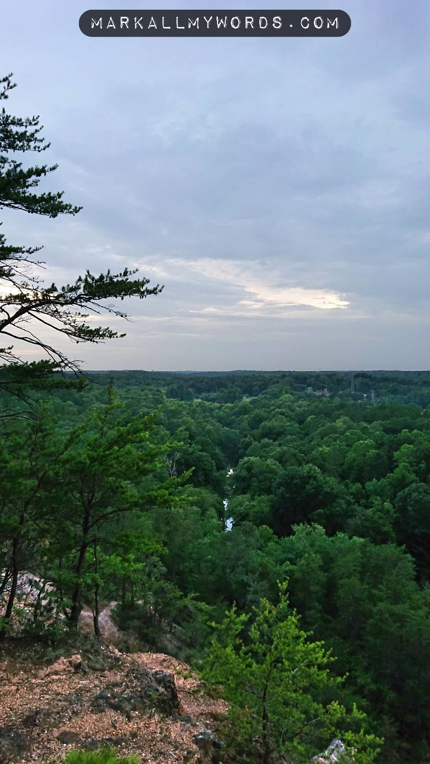 Eno River from Overlook, surrounded by lush forest