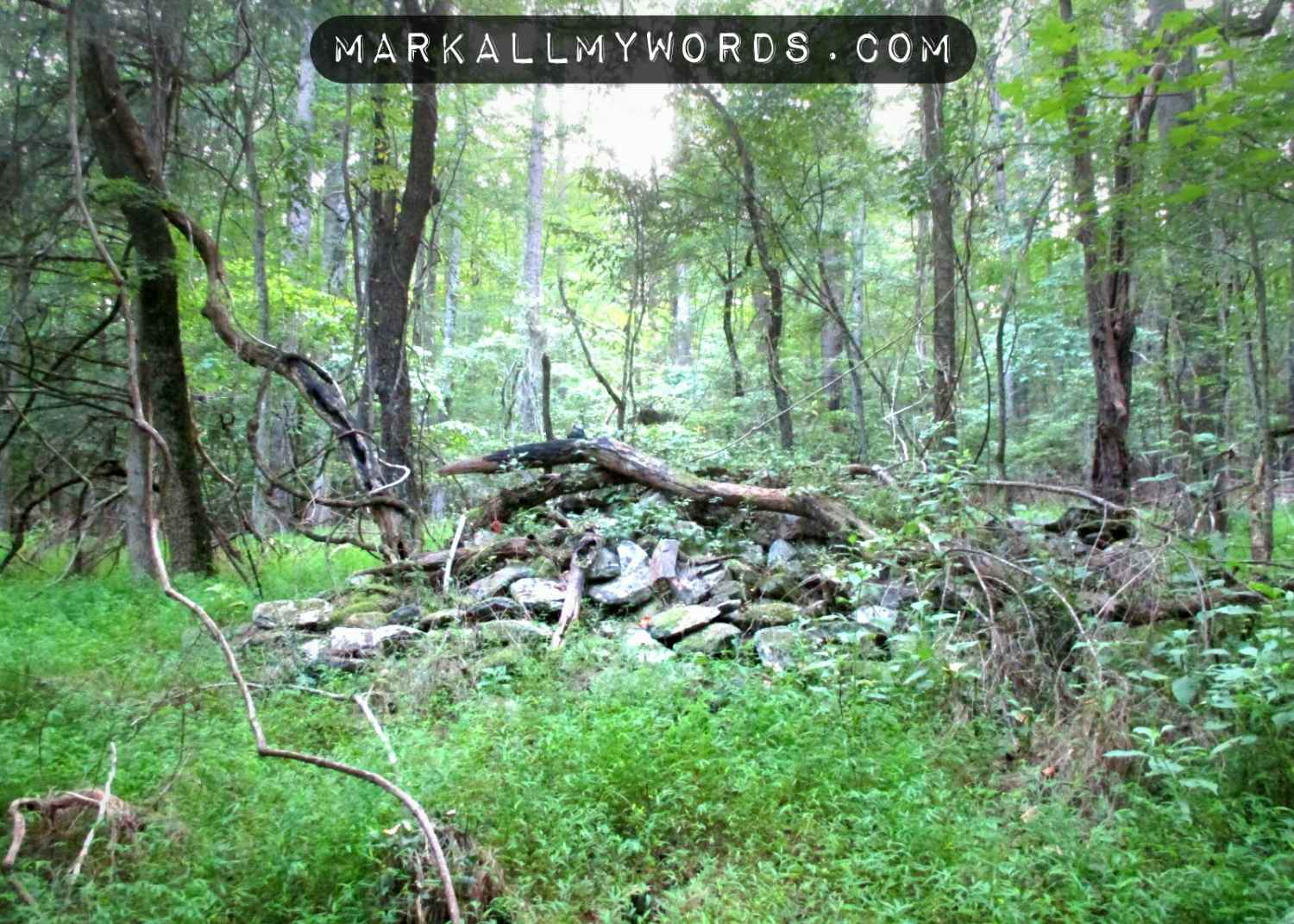 Pile of rubble, most likely from Dunnagan family home