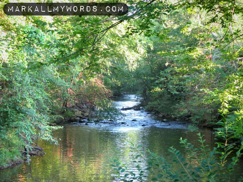 Eno River from Hillsborough Riverwalk near Gold Park