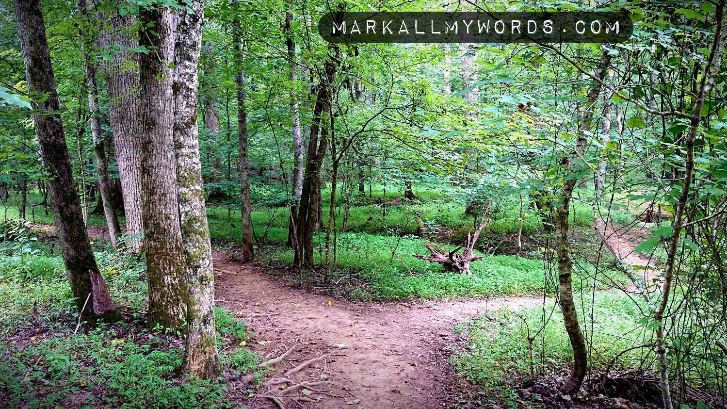 Robin's Trail divides