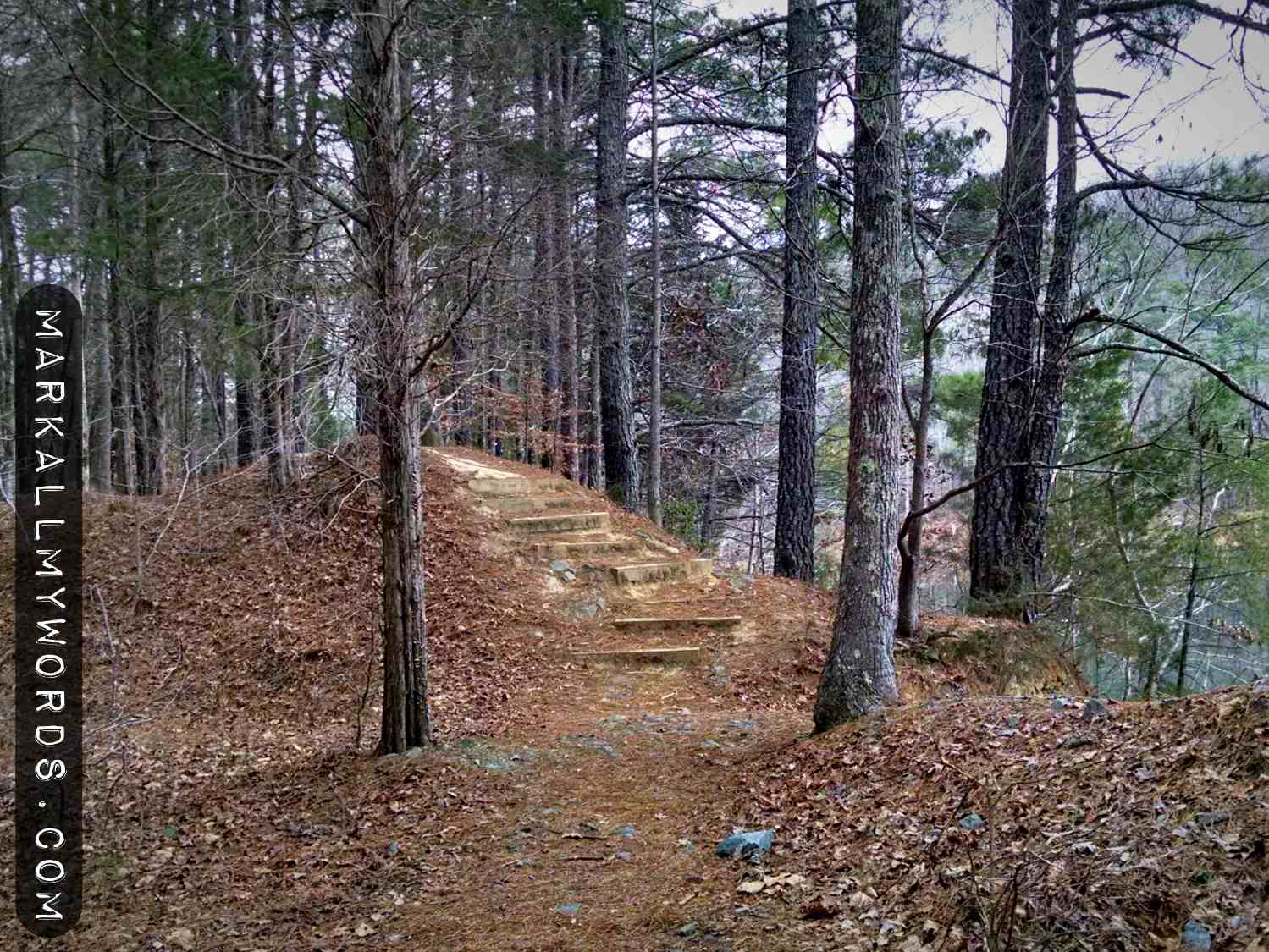 Steps leading around the edge of the Eno River Rock Quarry