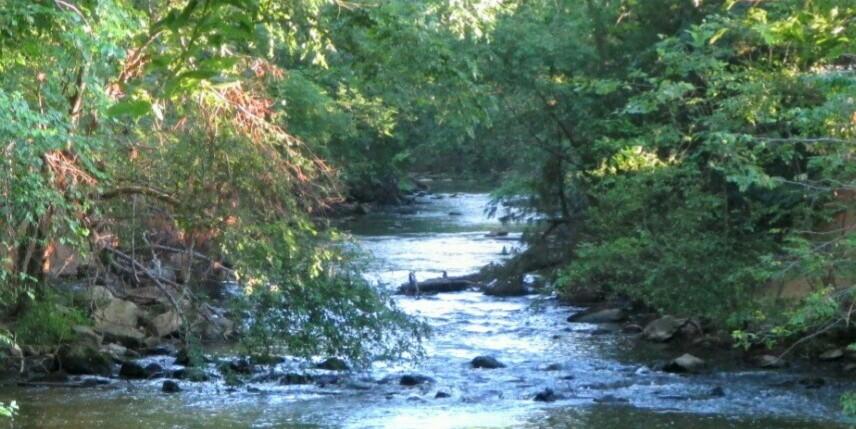 Eno River from Hillsborough Riverwalk