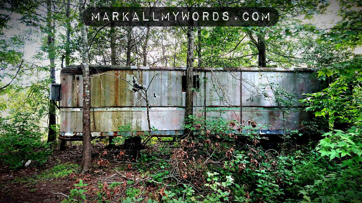 Old metallic trailer in the woods
