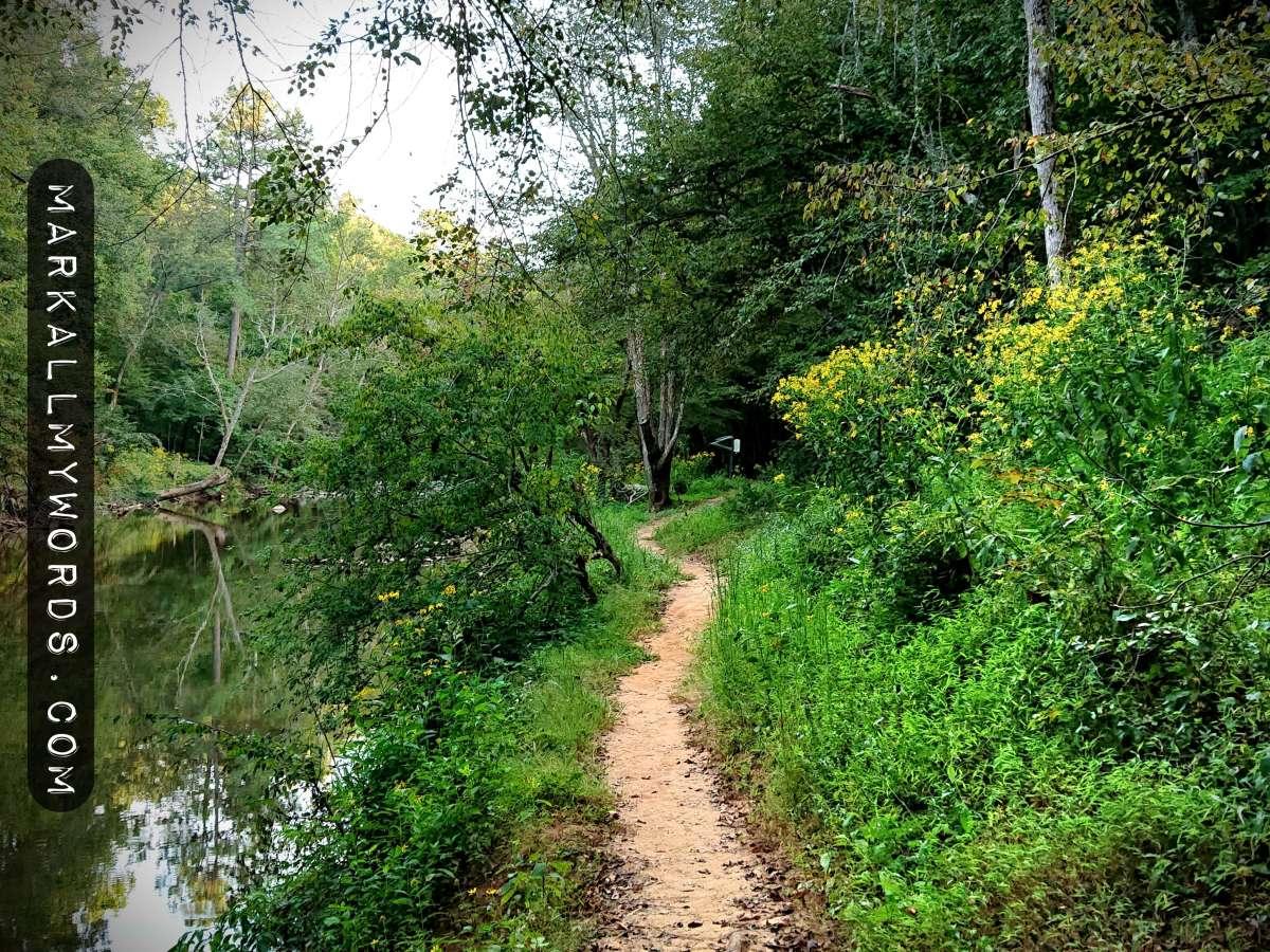 Pea Creek Trail by the Eno River