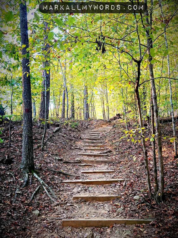 Buckquarter Creek Trail, going uphill