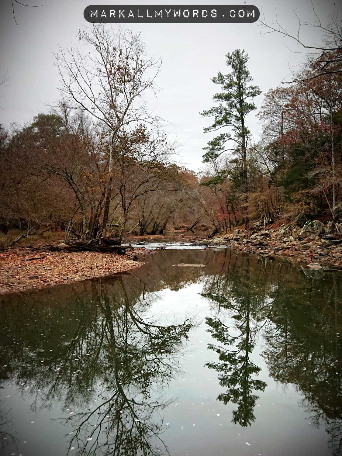 Drowning Horse Pond in fall from Laurel Bluffs Trail