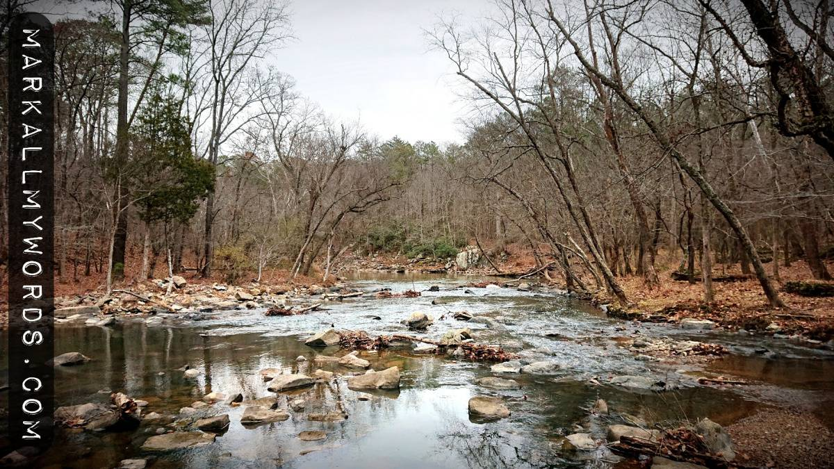 Eno River from Pump Station Trail