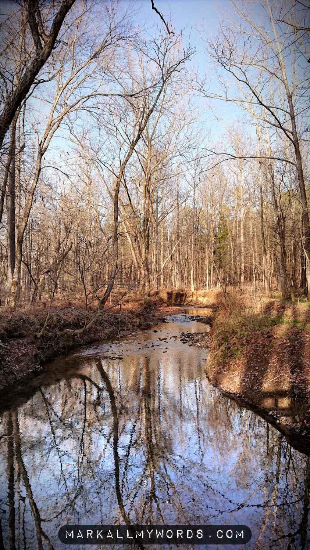 Buckquarter Creek in winter