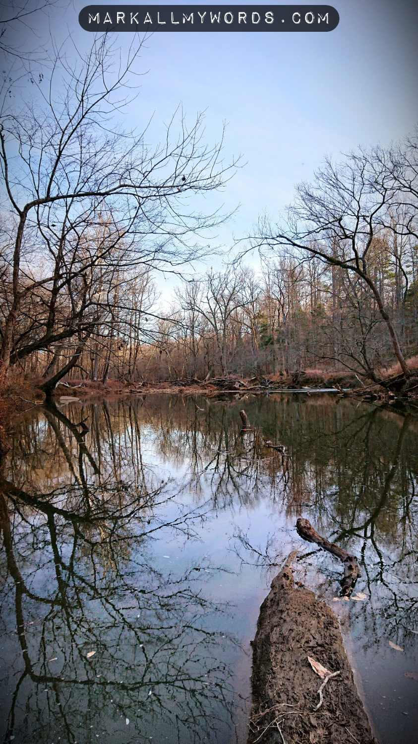 Eno River in winter