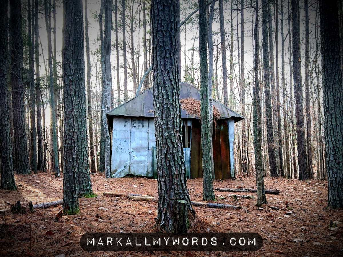 Old men's outhouse out in the woods