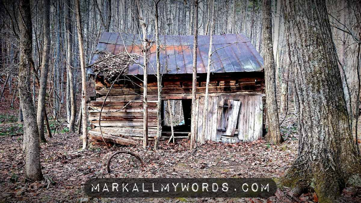Sister's House, an old cabin with open door in the woods
