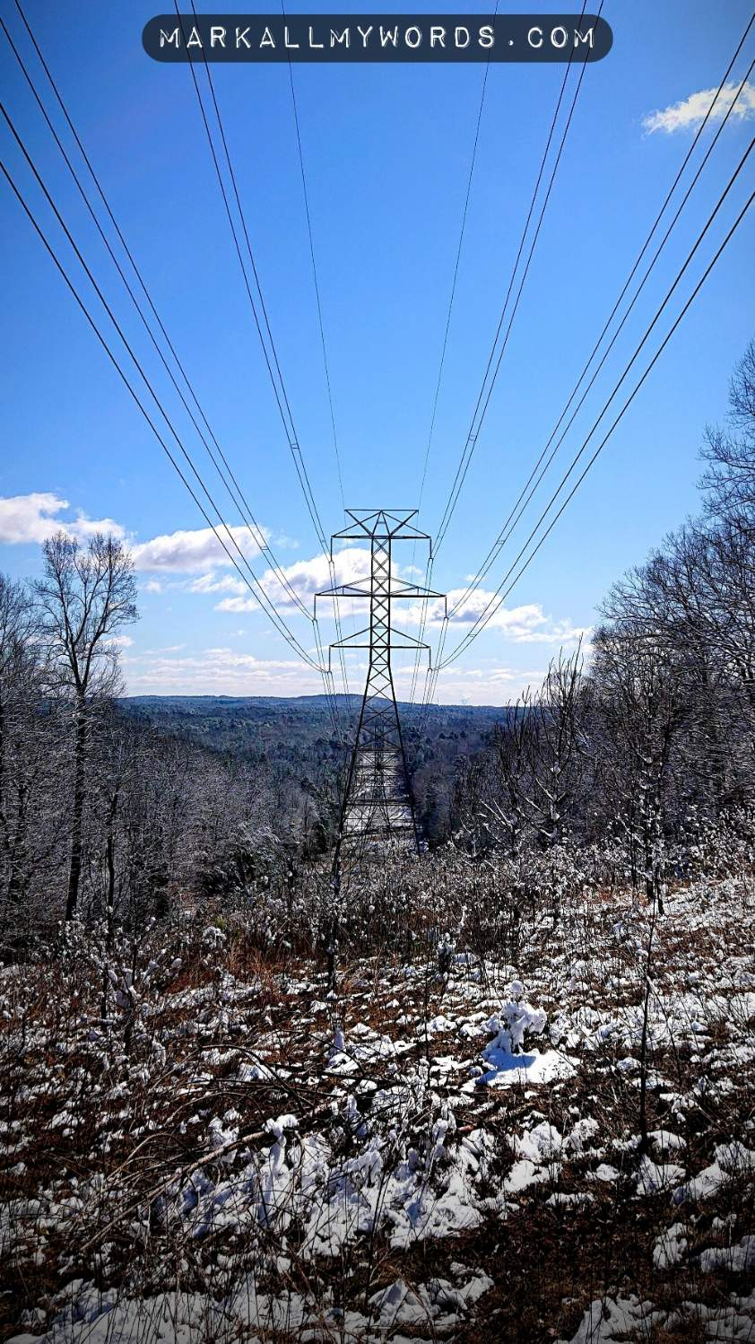 Snowy clearcut with power line