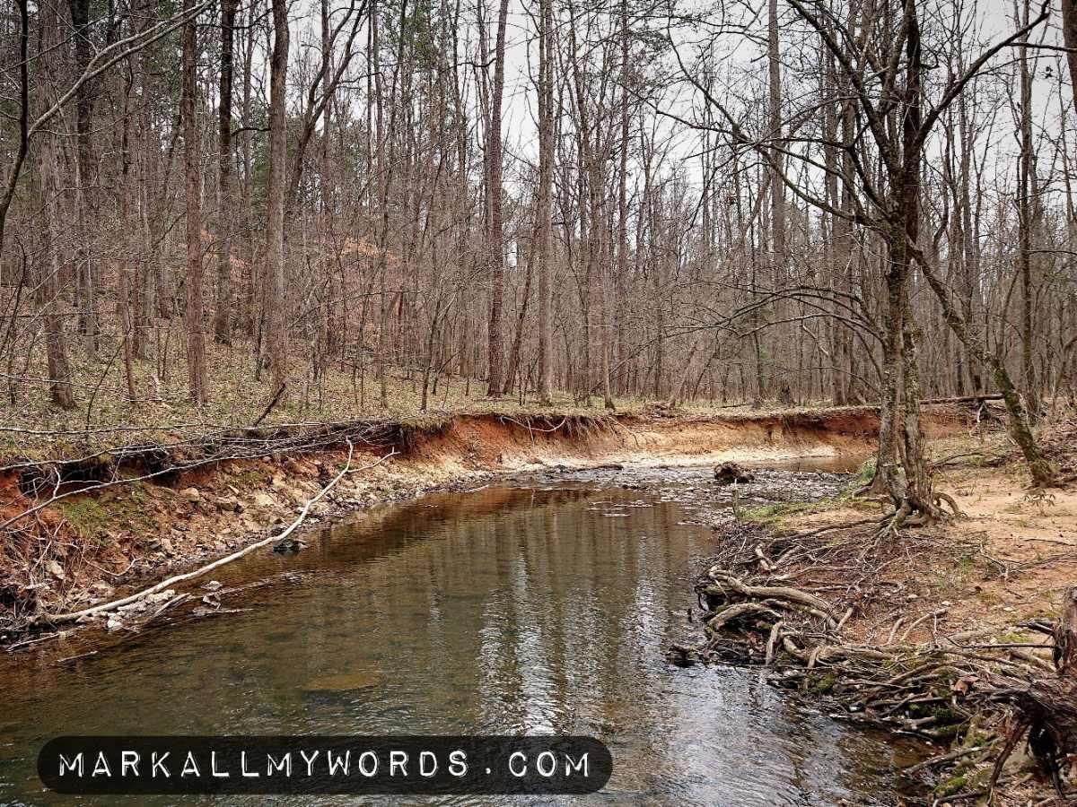 Buckquarter Creek winding south through bare trees