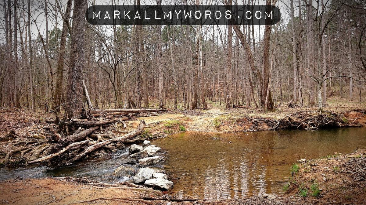 Ford of stones crossing Buckquarter Creek