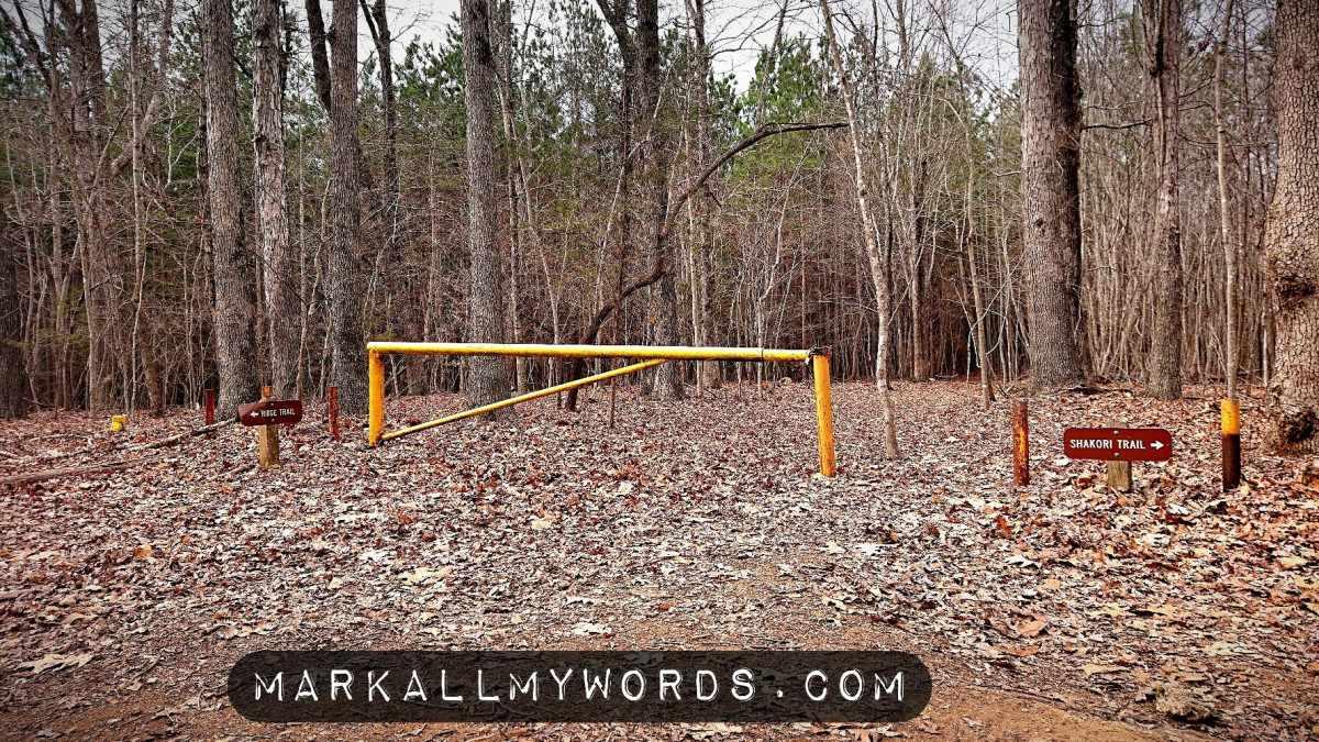 Yellow metal gate