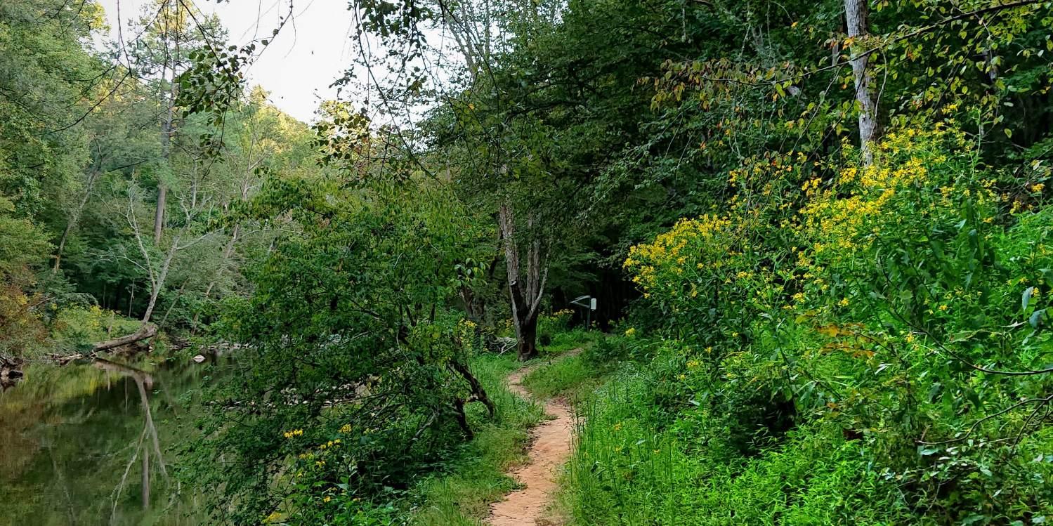 Pea Creek Trail at Eno River State Park