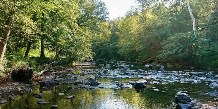 Eno River near Cox Mountain